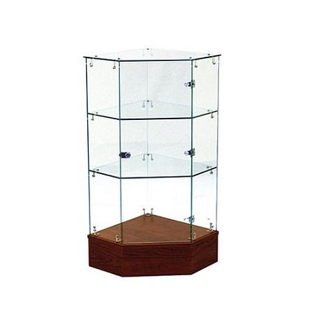 Frameless Corner Filler Full Vision W Swing Door